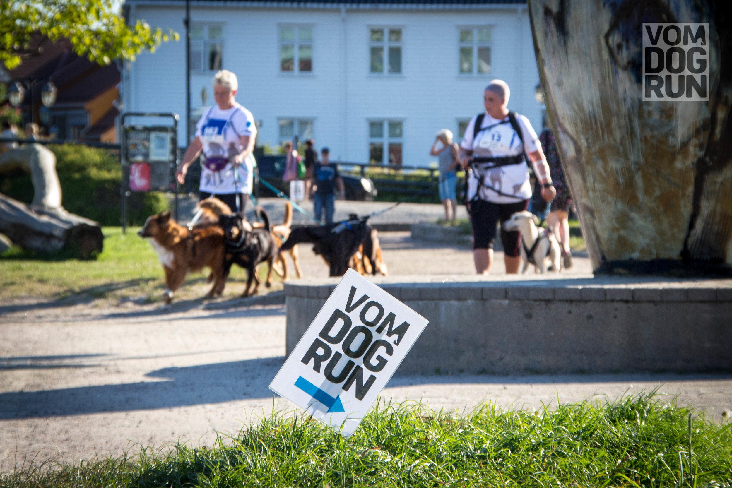 VOM Dog Run SoMe-63.jpg