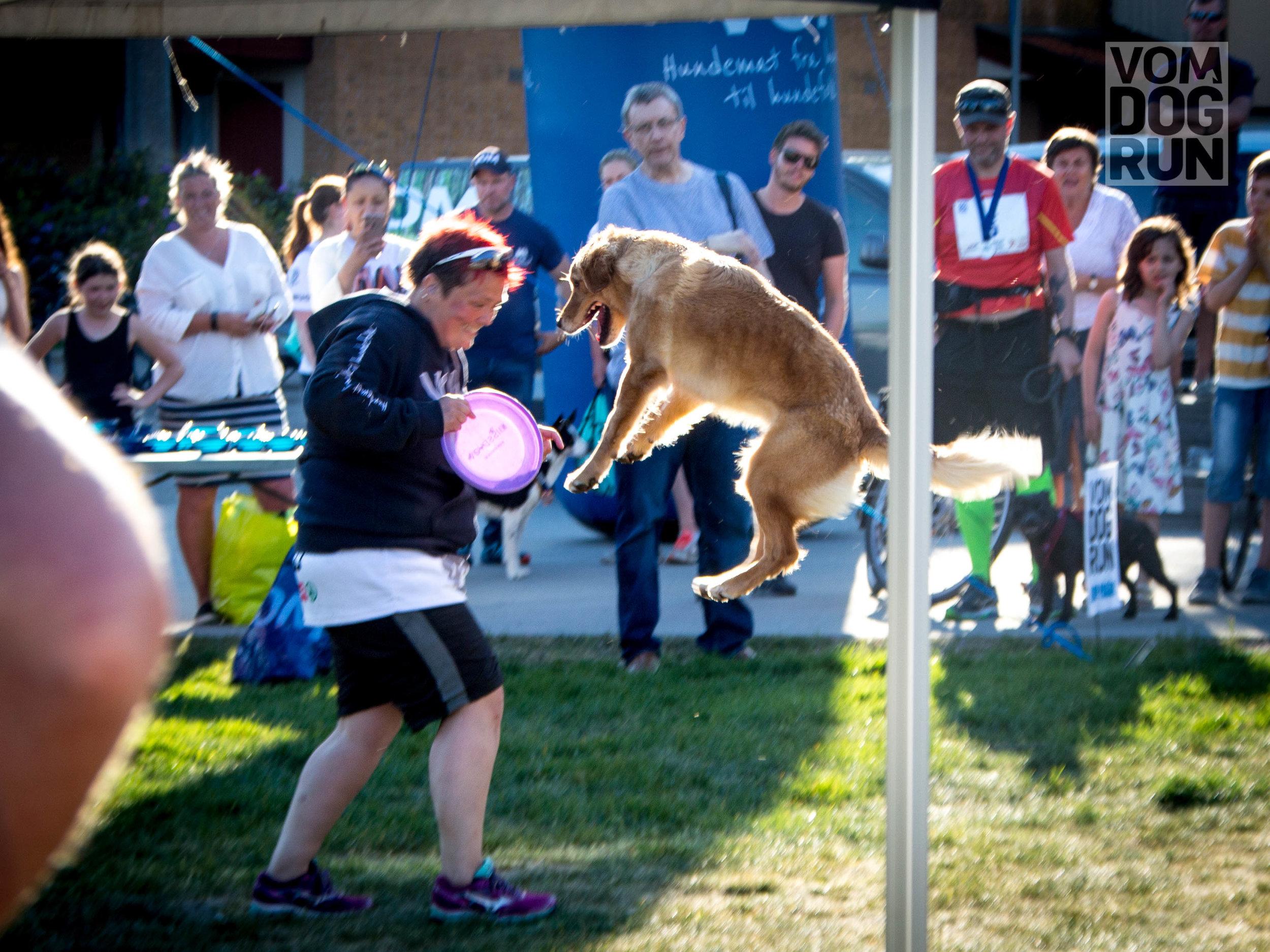 VOM Dog Run SoMe-100.jpg