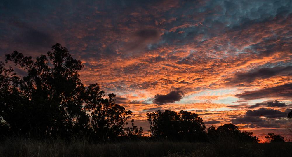 CountryCameraClub-LibbyMcPhee-4.jpg