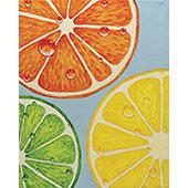slices_of_citrus_170.jpg