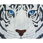 white_tiger_170.jpg