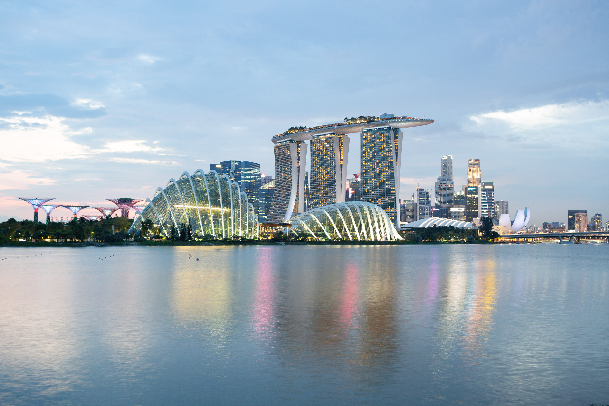 Marina Bay and Gardens by the Bay, image by Andrew Campbell Nelson.jpg