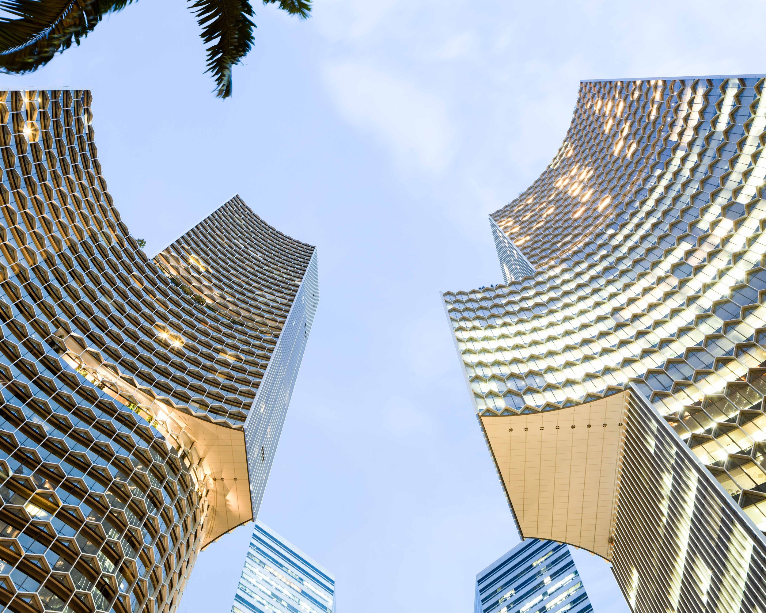 Duo Singapore 66, image by Andrew Campbell Nelson.jpg
