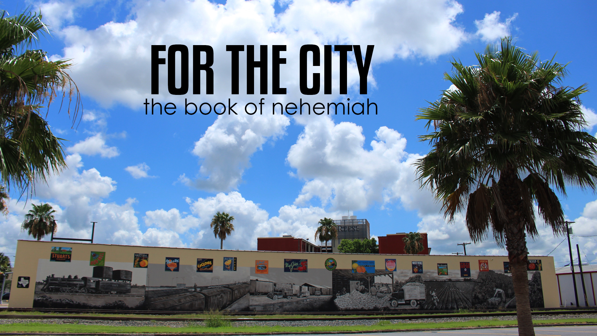 Nehemiah - For the City