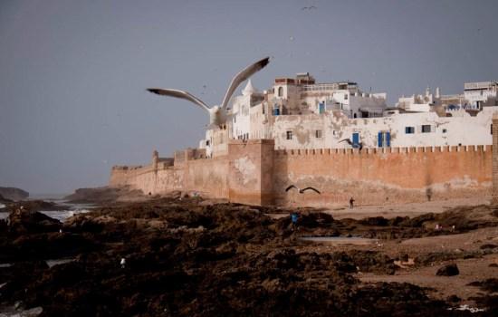 Essaouiraa.jpg