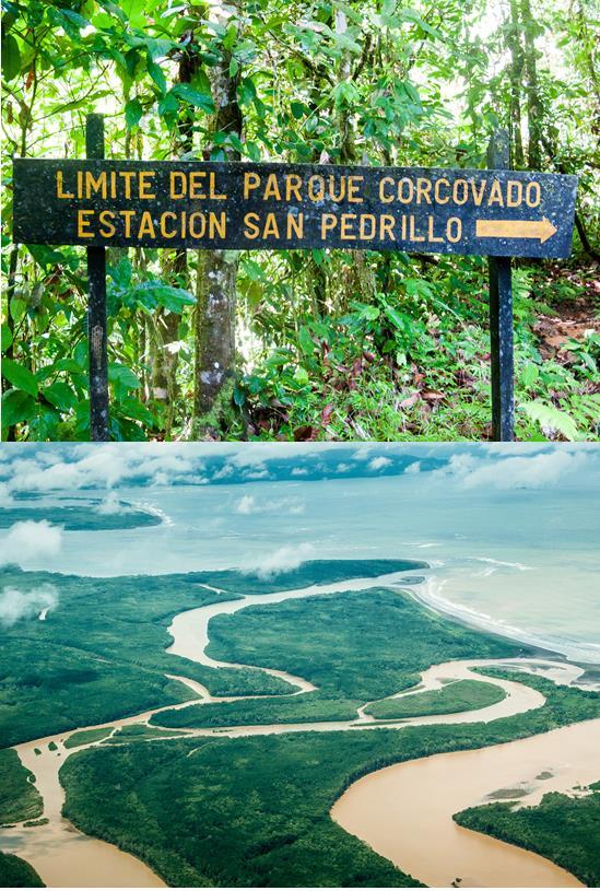 Corcovado1.jpg