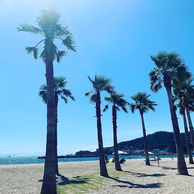 Enjoying Kataonami, a  1,200m long beach in Wakayama, 1 hr by train from Osaka. #swimminginjapan #swimminginkansai #letsgoswimming #kataonamibeach