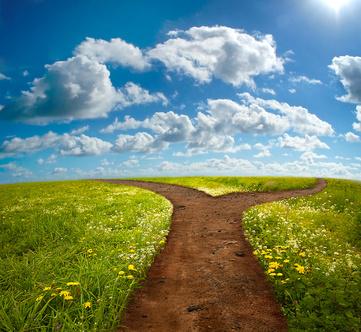 Diverging-Path-Choices.jpeg