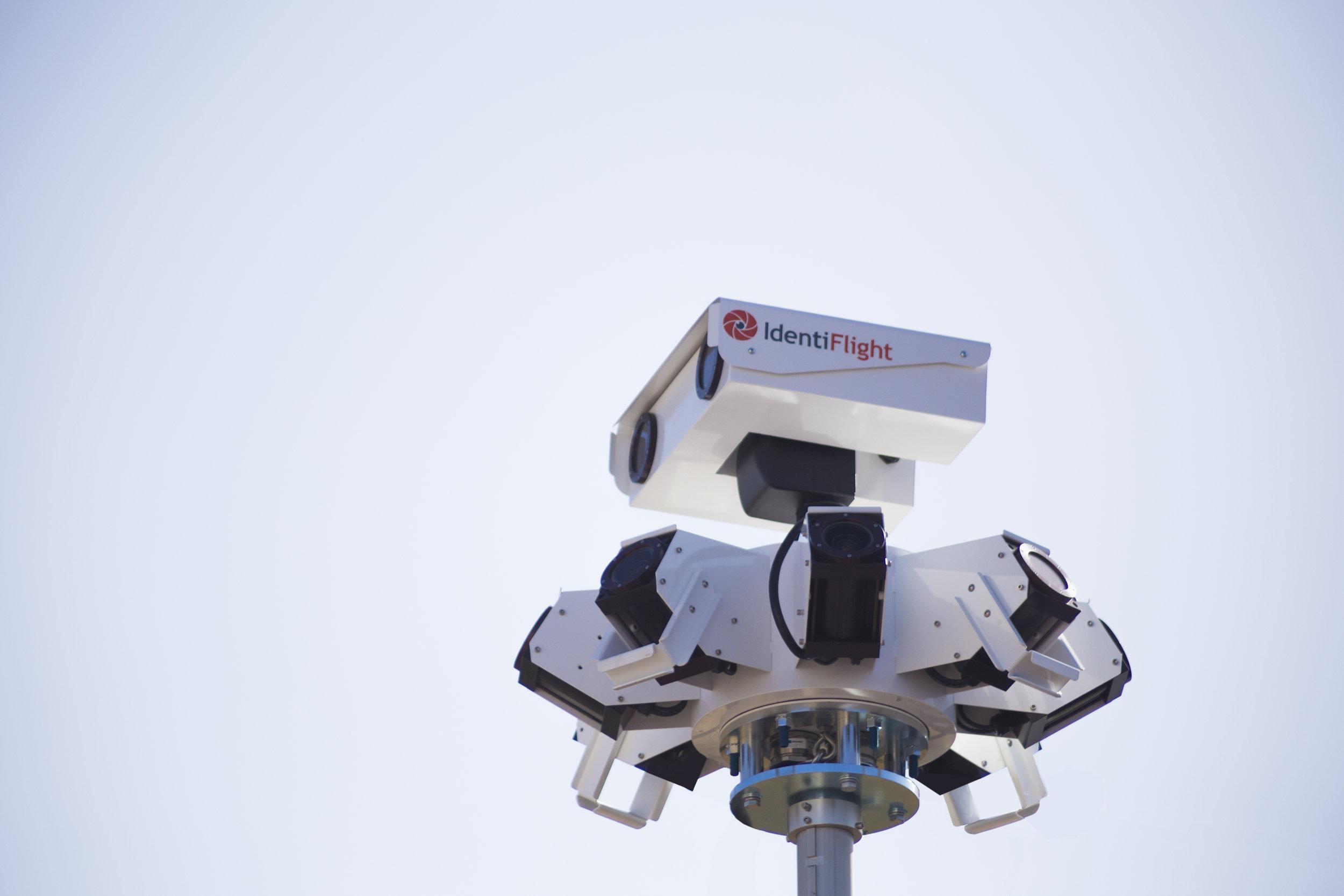 IdentiFlight Imaging Head