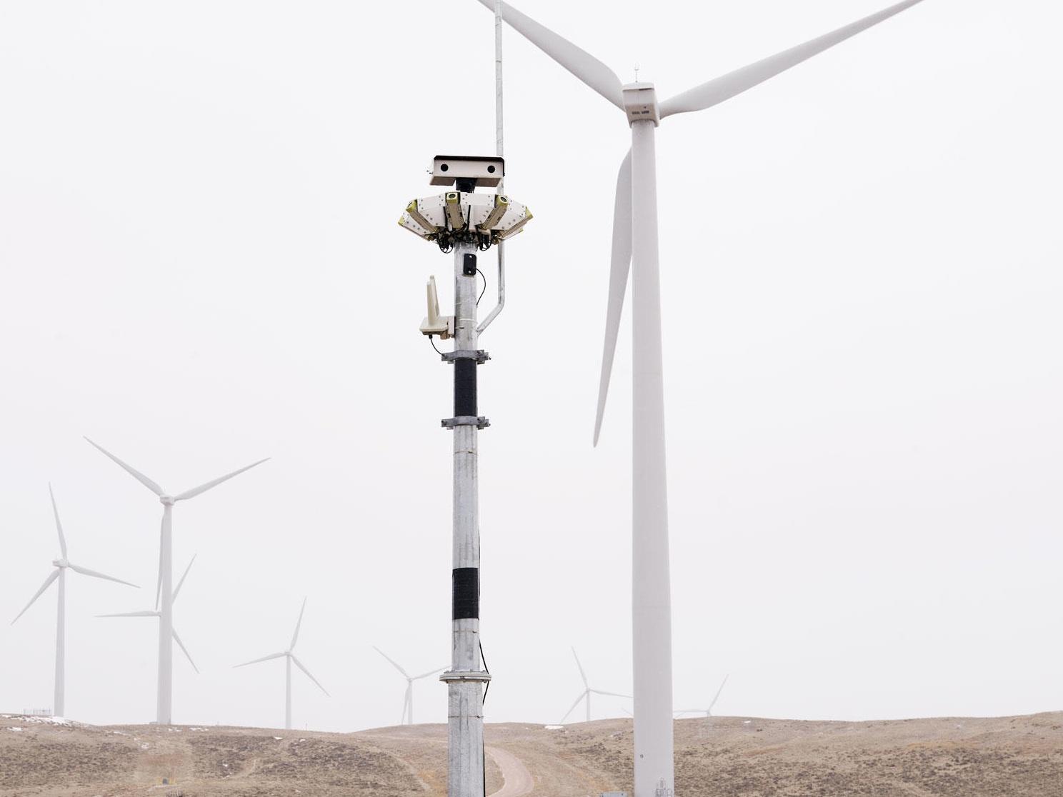 How+New+Technology+Is+Making+Wind+Farms+Safer+for+Birds+_+Audubon.jpg