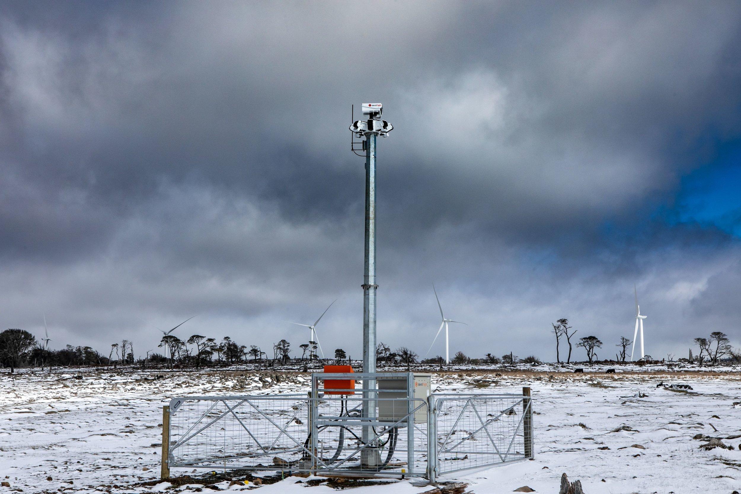 IdentiFlight at Cattle Hill Wind Farm. Image provided by Goldwind Australia