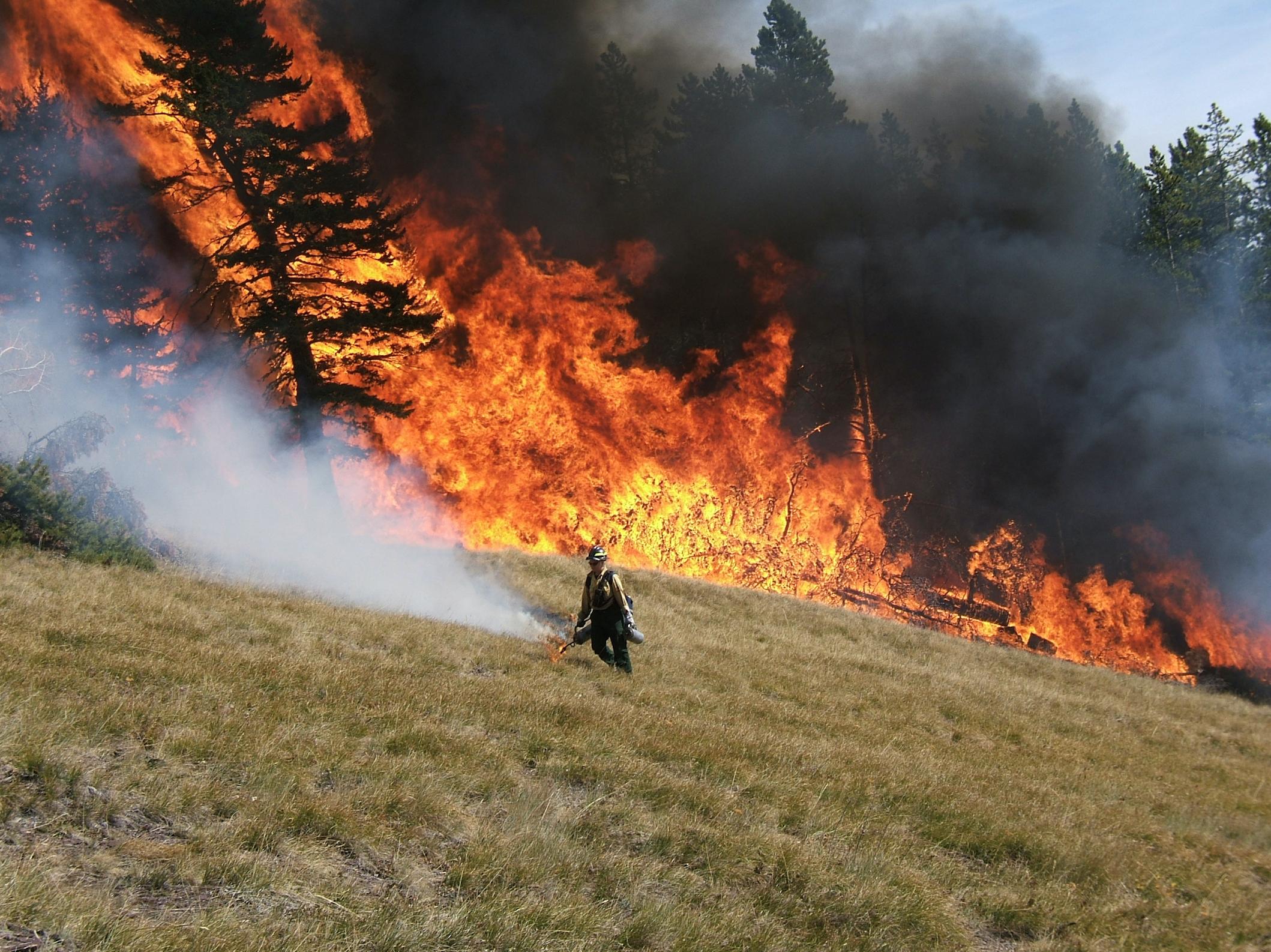 Alice Creek prescribed burn on the Lincoln Ranger District.