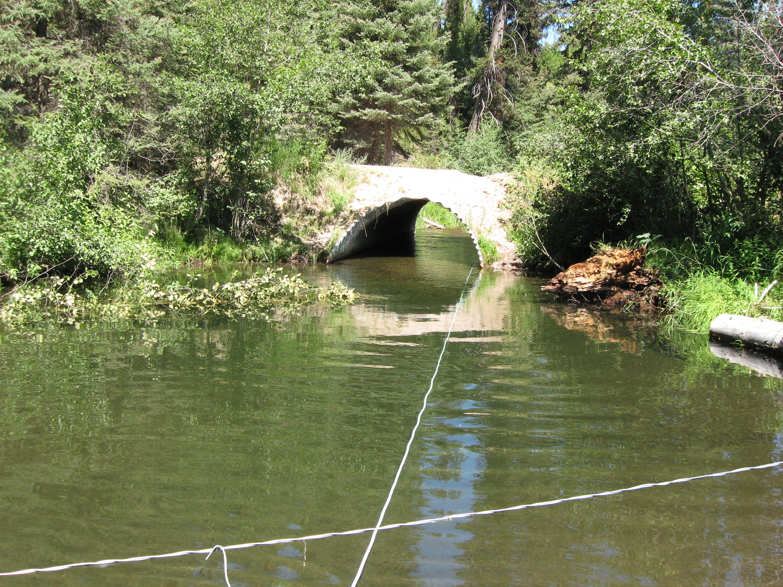 Old culvert, prior to replacement.