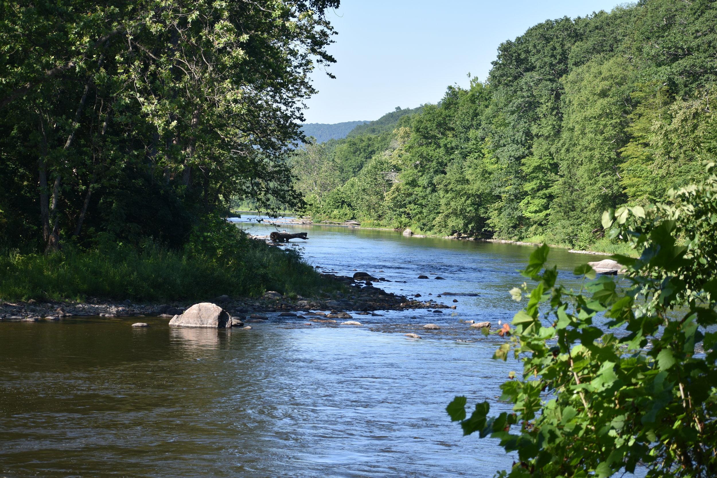 River Habitat