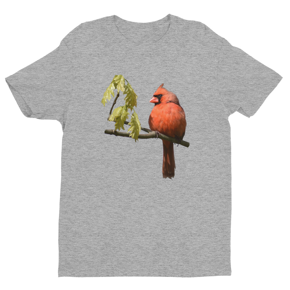 Cardinal T-Shirt Heather Gray