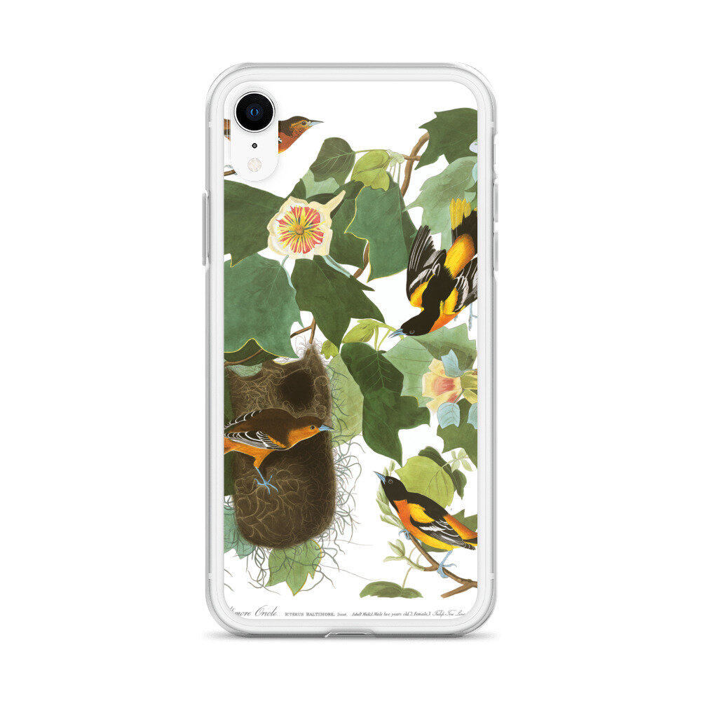 Baltimore Oriole iPhone Case: Click for More