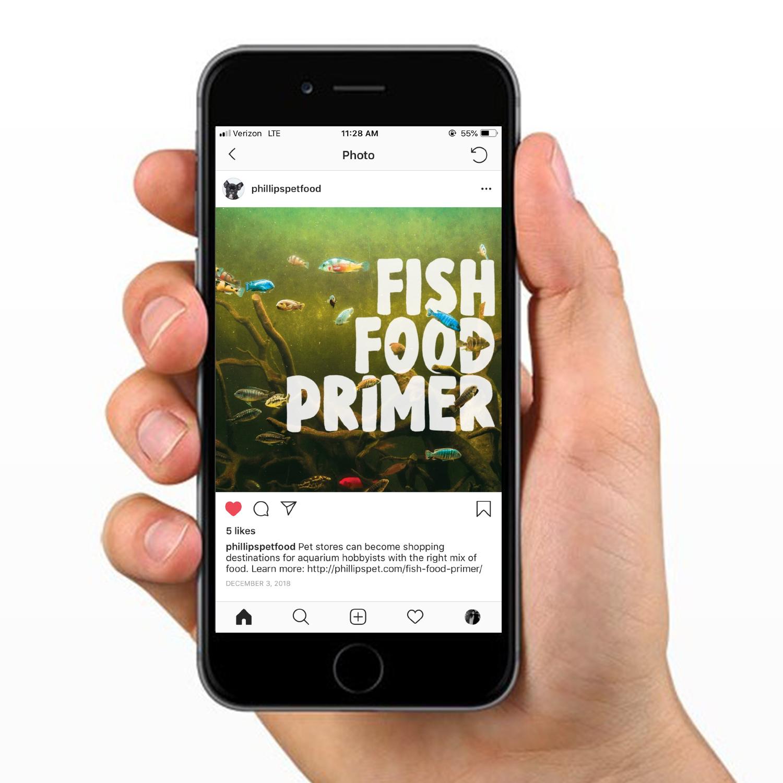 fish food mockup.jpg