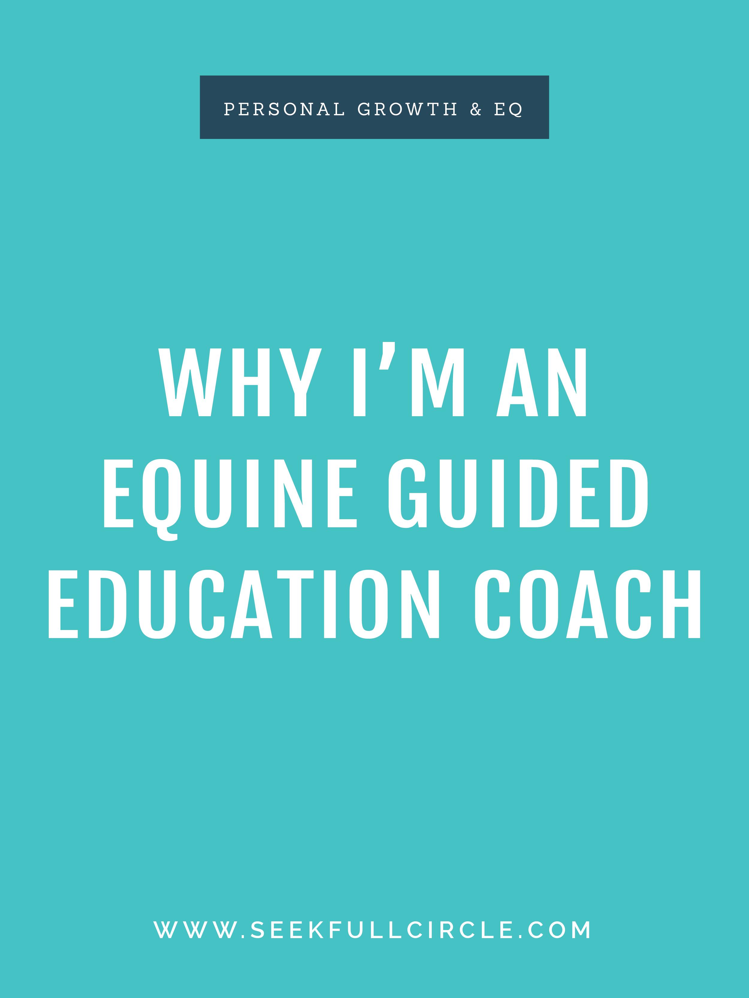 kim waltman fullcircle creative + coaching equine guided education EQ blog