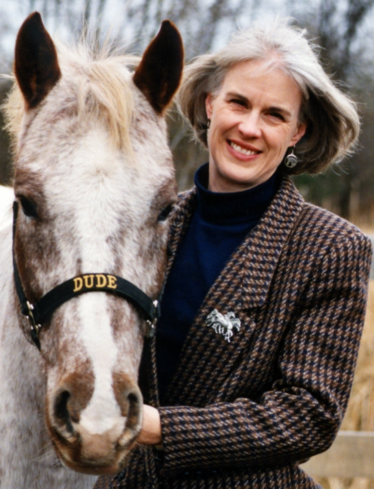 kim waltman fullcircle creative + coaching equine guided education blog