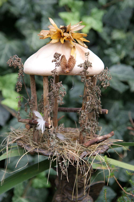 Mushroom Gazebo Background