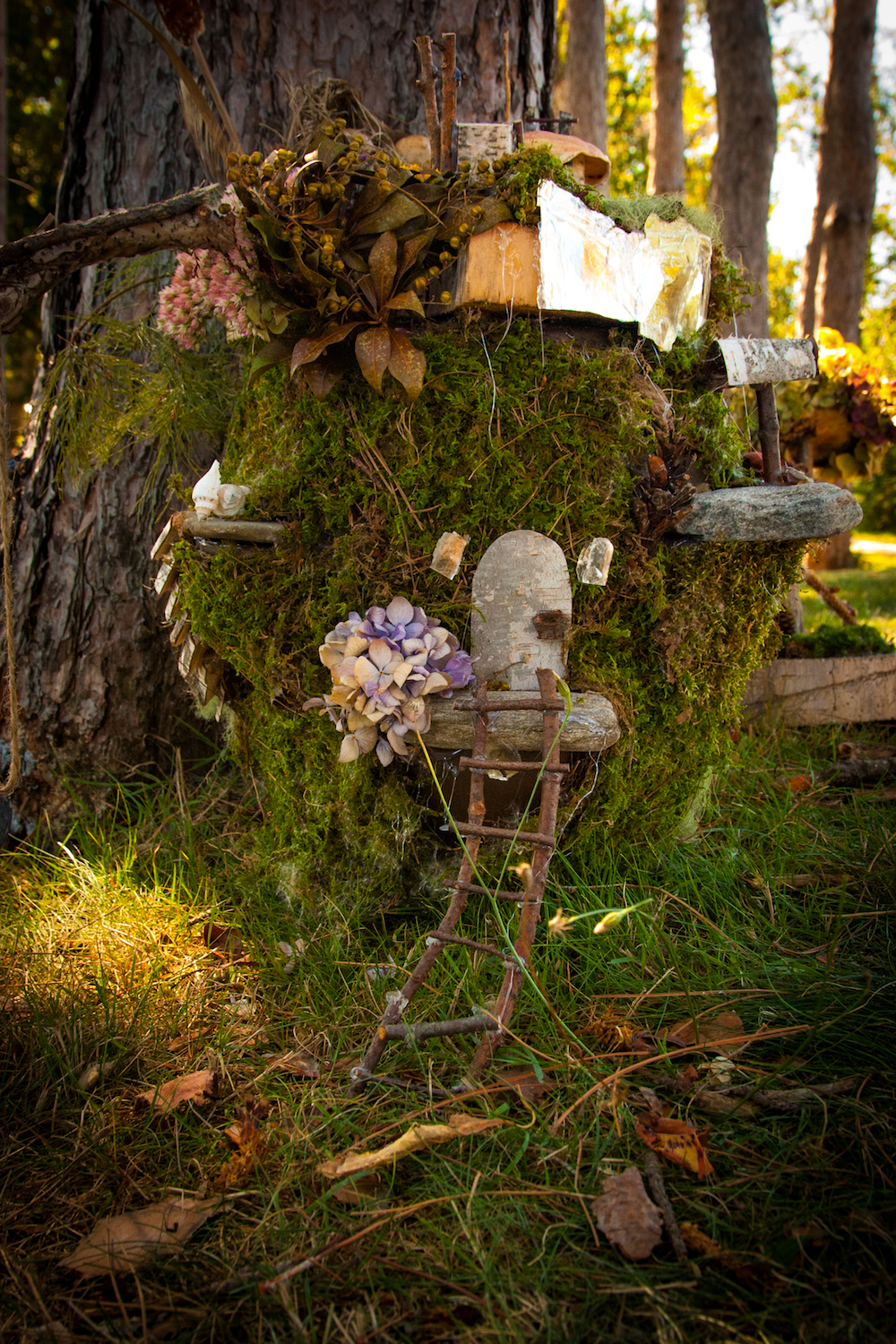 Mossy Hollow Fairy House Background