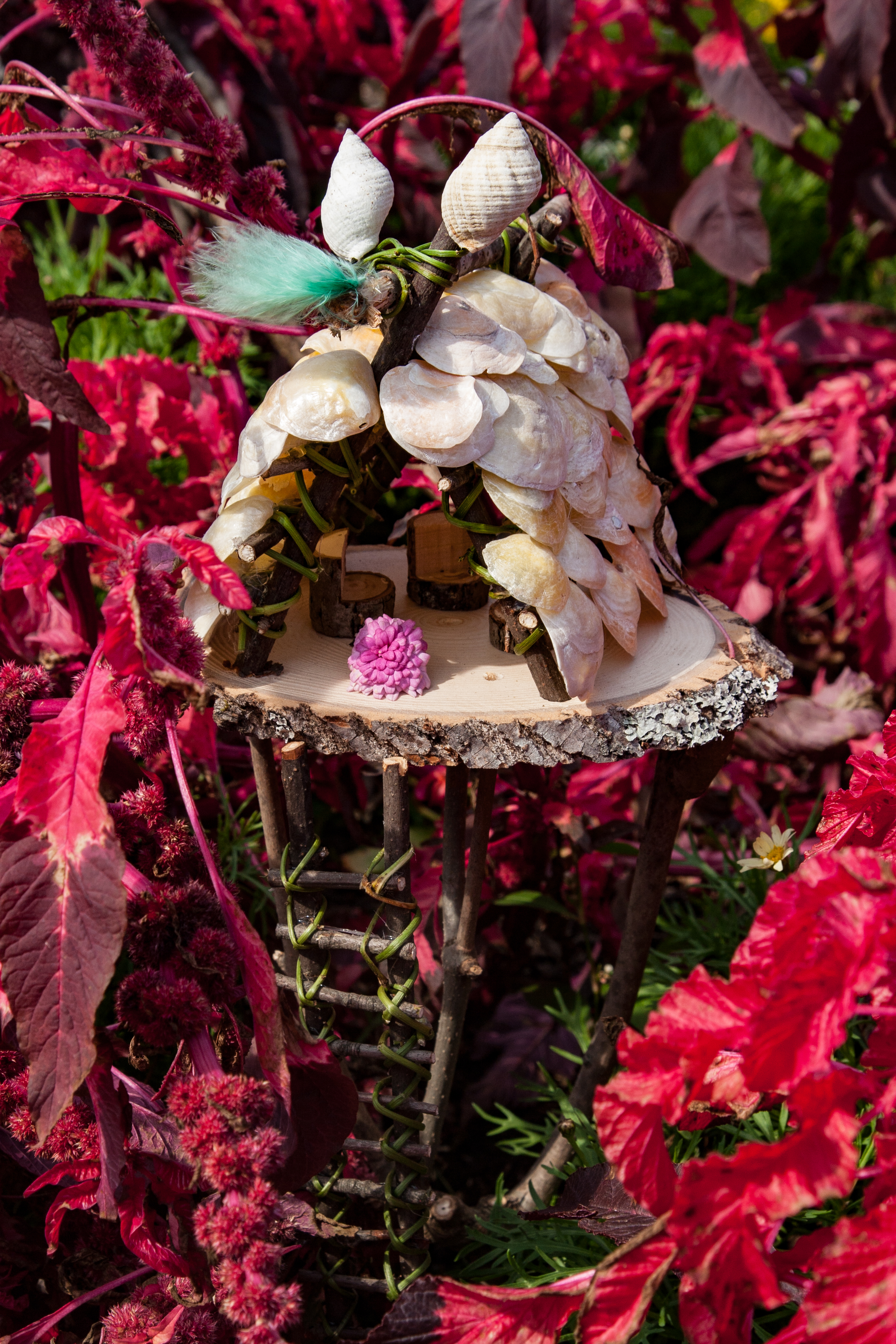 Seashell Fairy House Shadow Box