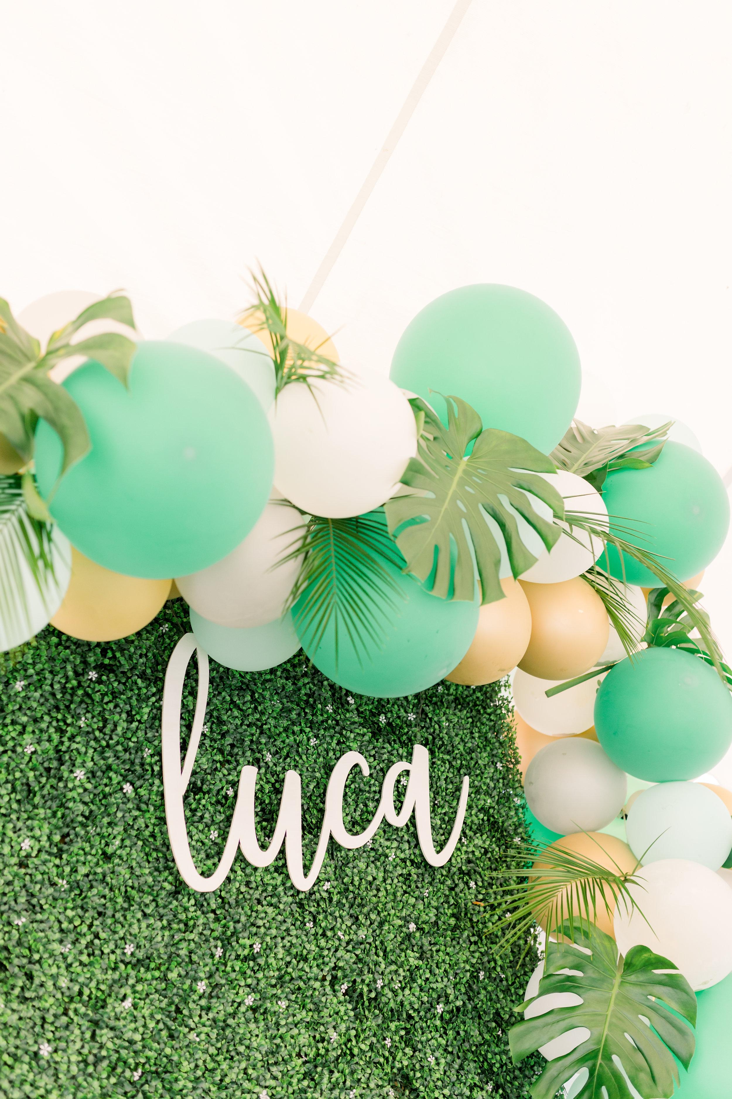 Luca's First Birthday-2.jpg