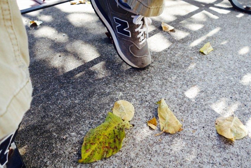 leaves-too-compressed.jpg