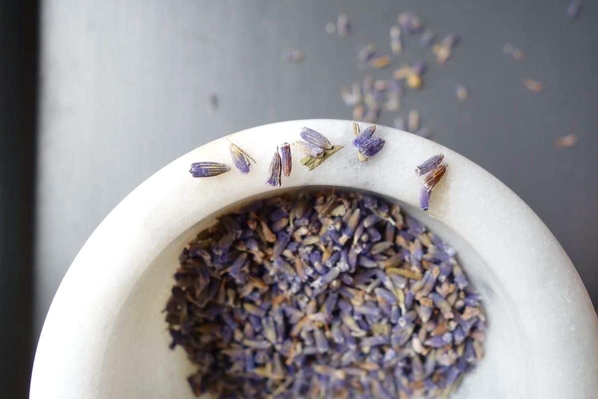 no 'poo lavender rinse.jpg