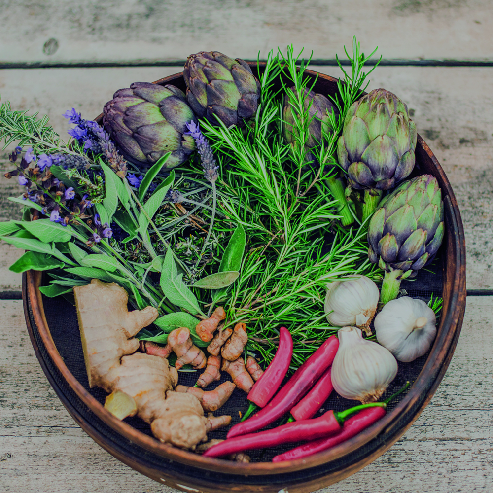 Nourishing nutrition -