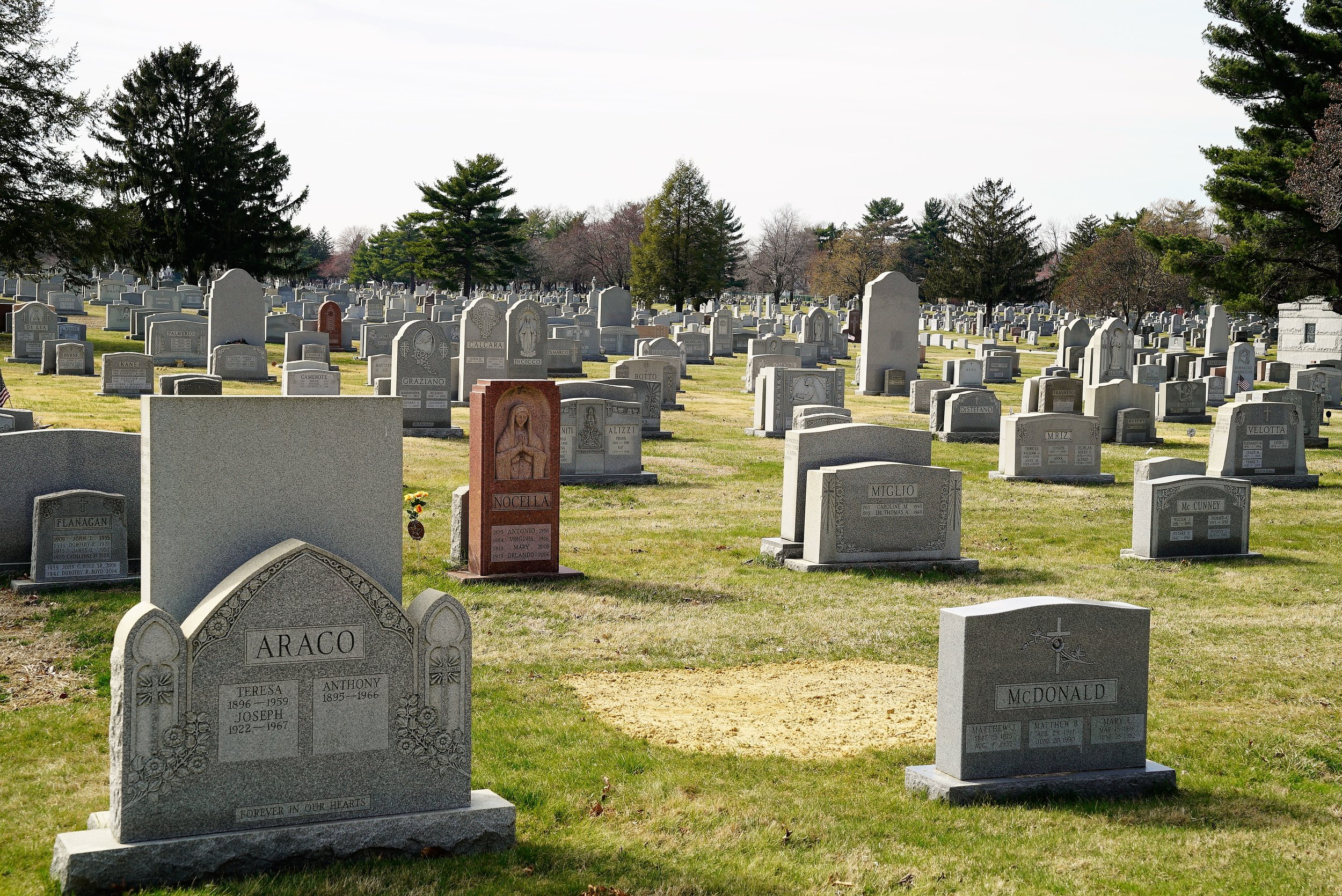 Photo: Holy Cross Cemetery in Yeadon, PA is very large.