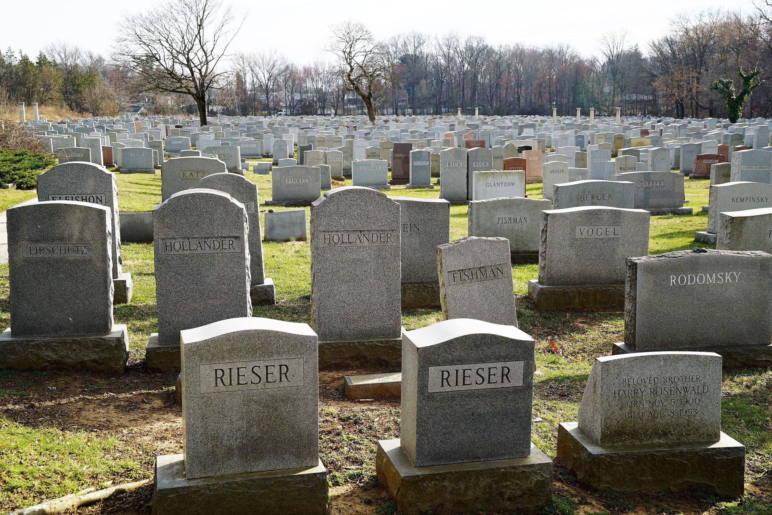 A sea of headstones. Mt. Sharon Cemetery, Springfield, PA.
