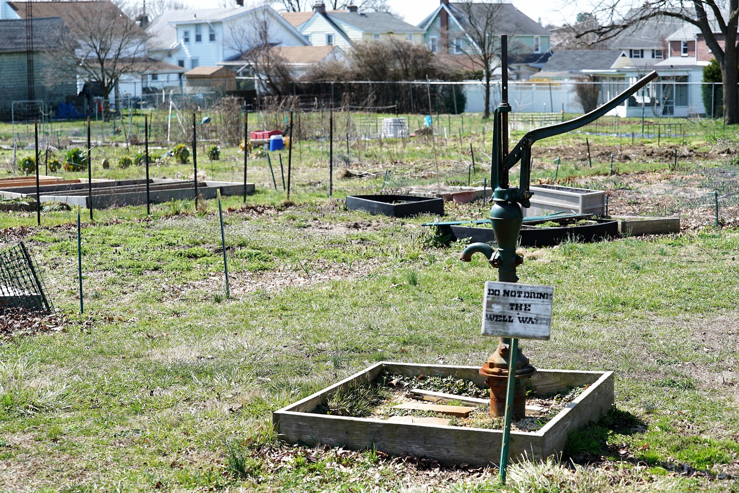The burial ground is on one side of this open space; the community garden is on the other side.