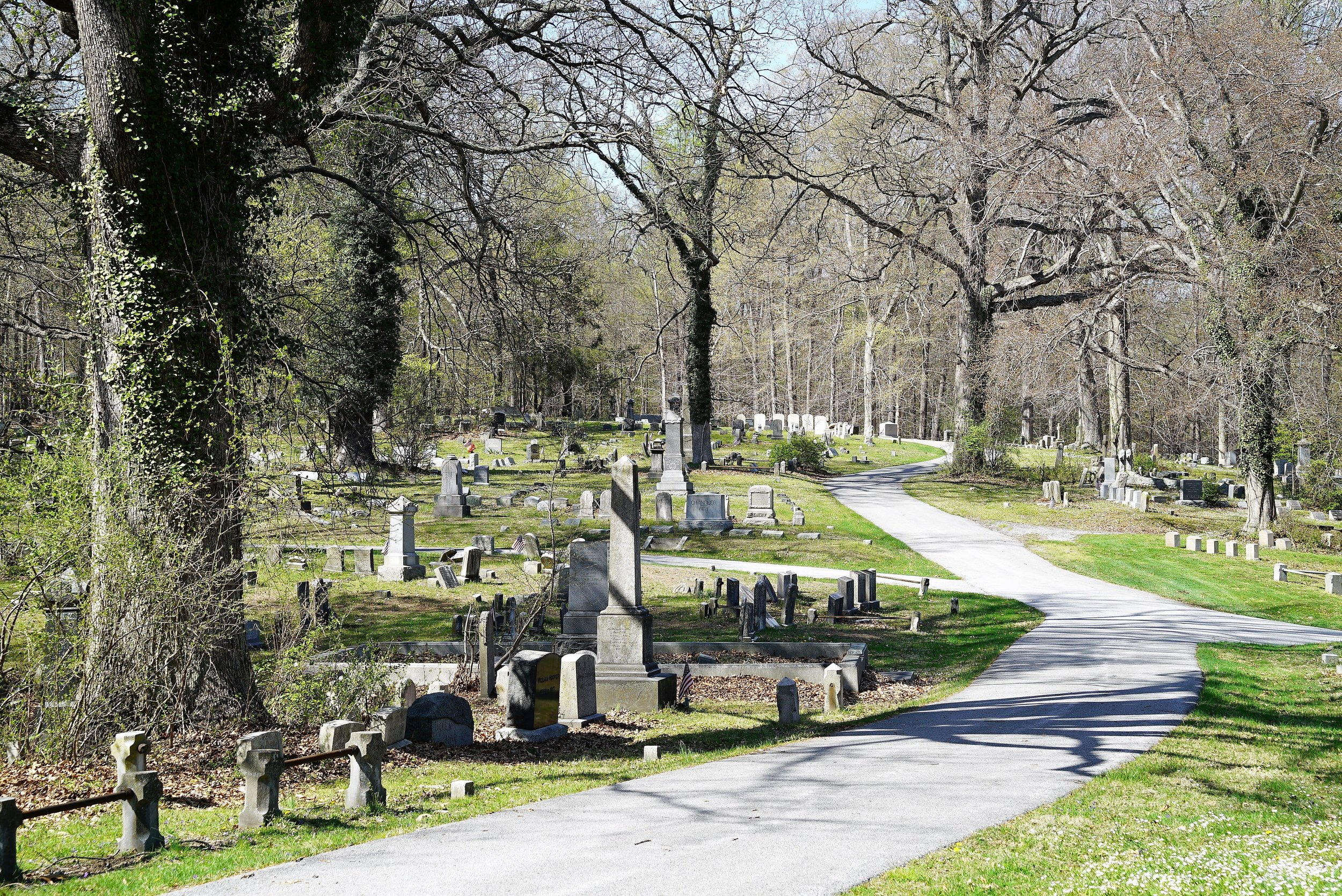 The wooded view at Oaklands Cemetery, West Chester, PA.