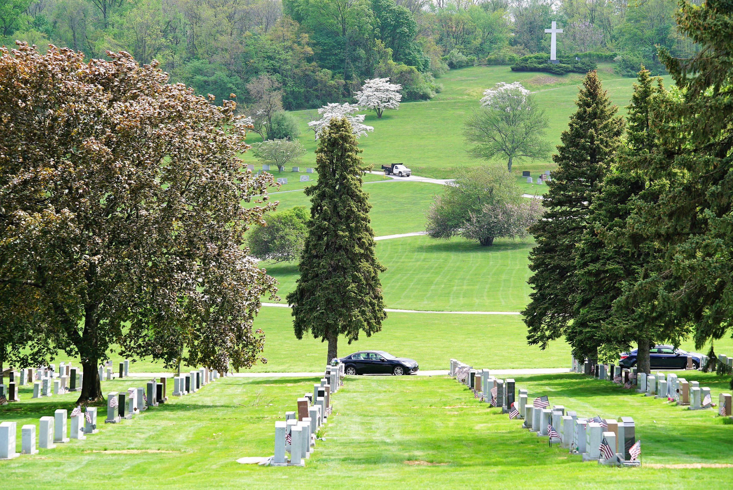 Inside Calvary Cemetery.
