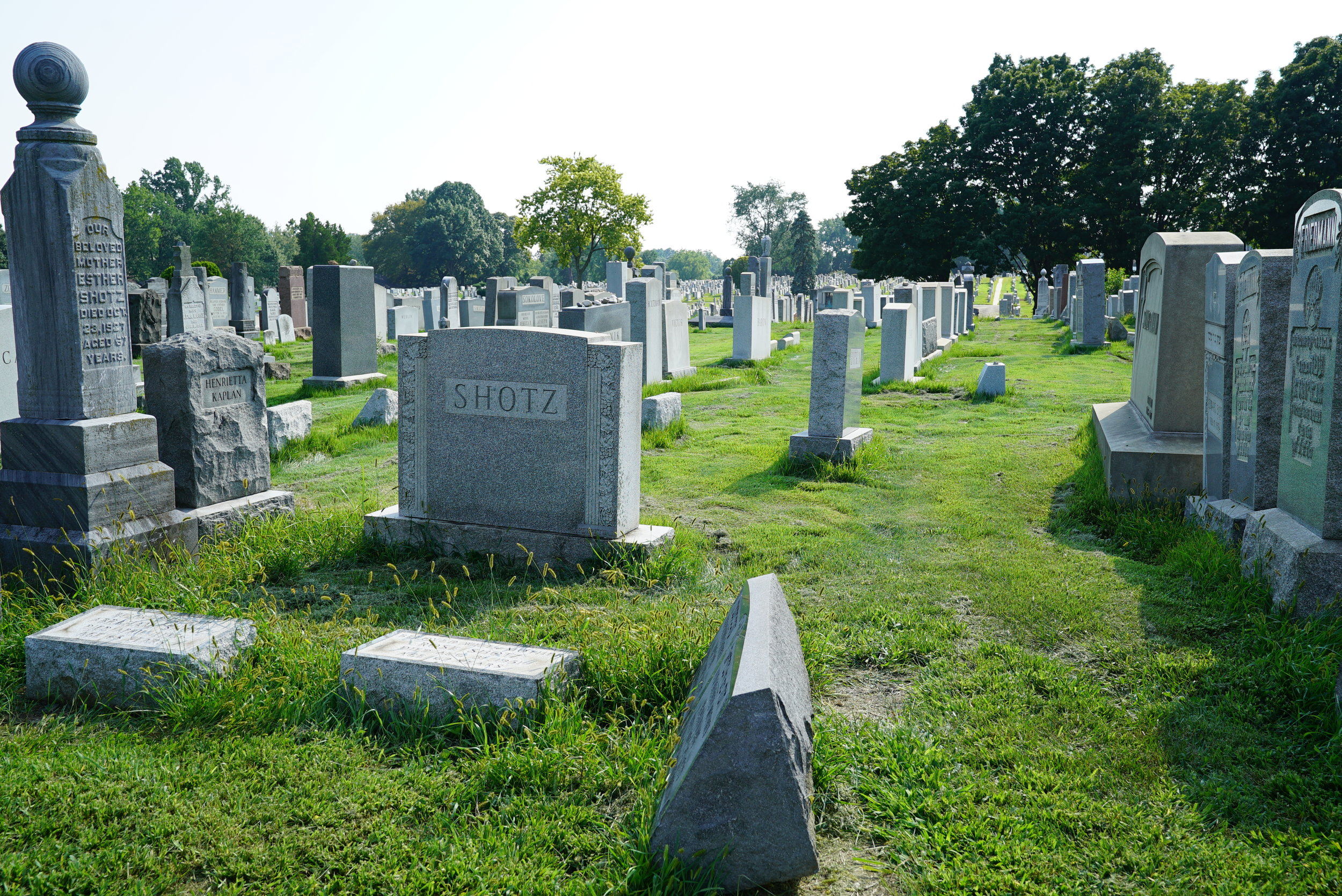 Montefiore Cemetery. Jenkintown, Pennsylvania. A grounds crew was at work during my visit.
