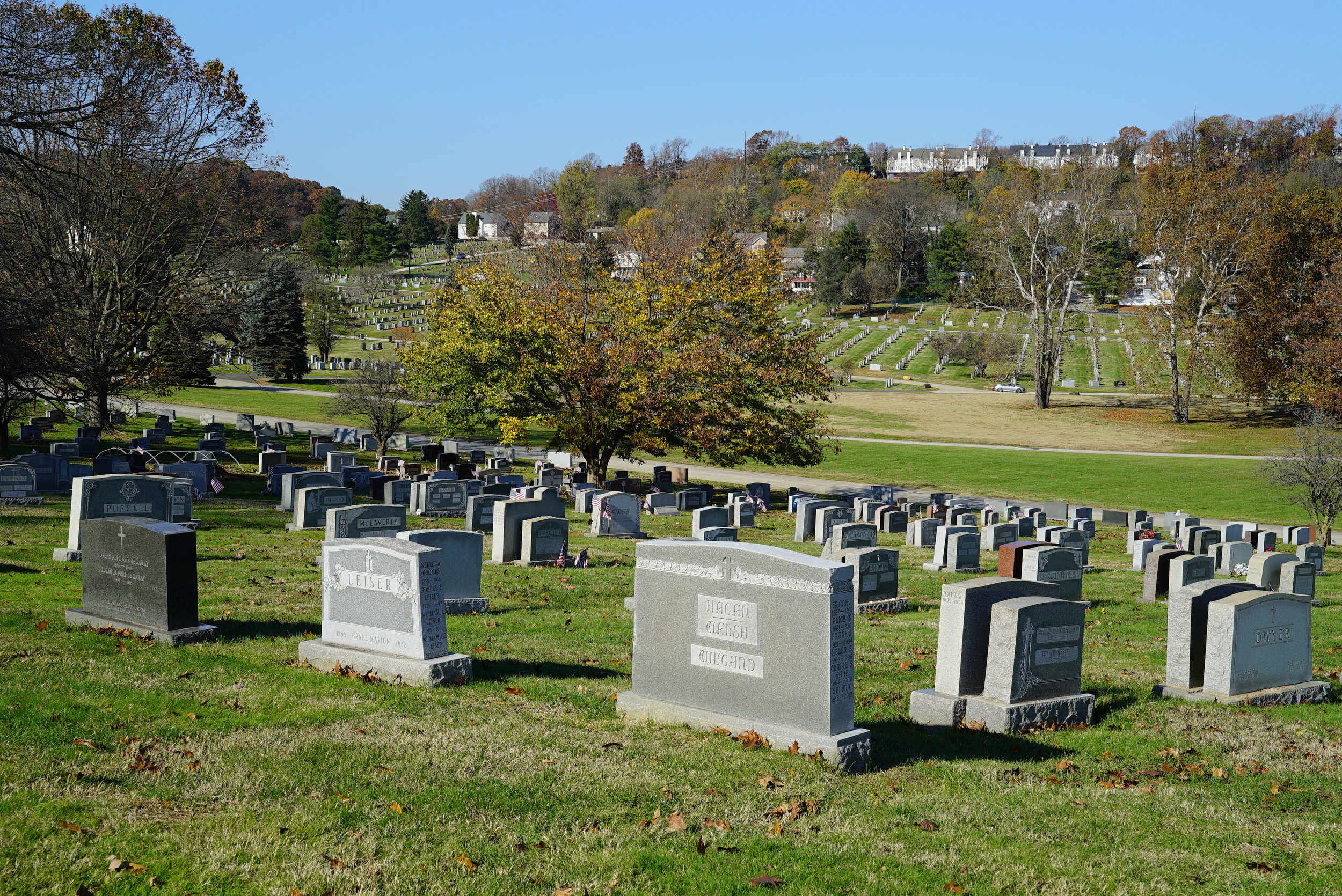 Calvary Cemetery. West Conshohocken, Pennsylvania. November 11, 2018