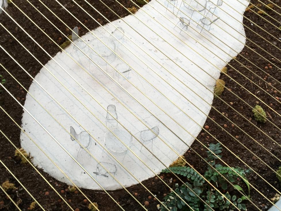 junya ishigami spring finn and co fondation cartier botanical farm