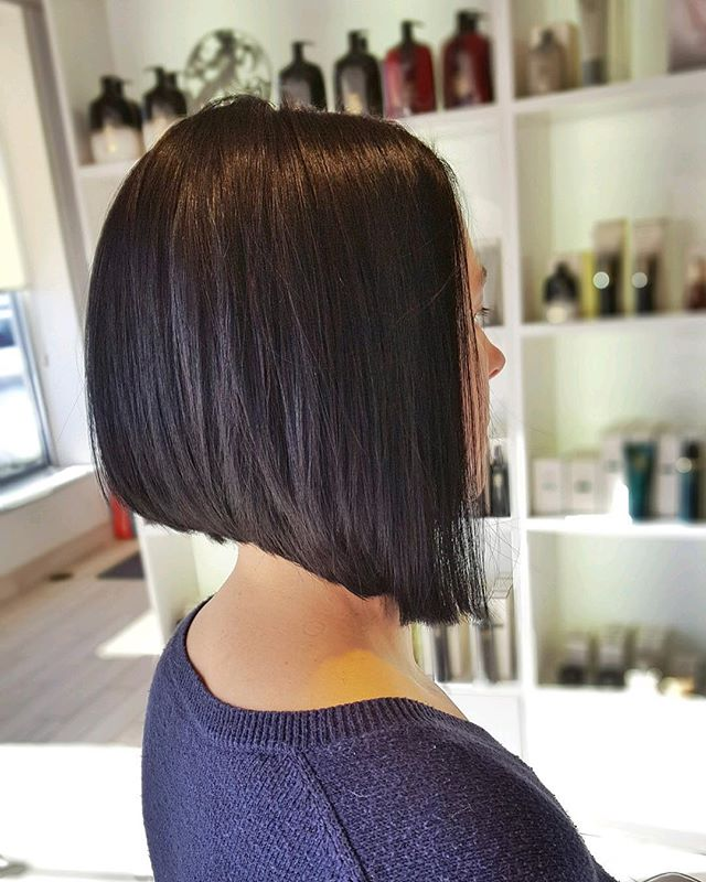 ➖ pretty & precise ➖  Stylist: Nikki MC.  #goodhair #haircut #annarborsalon #hair #trichosalonandspa #annarborhair #hairinspo #angledbob #bobhaircut #annarbor #briarwoodmall #hairstyles #hairoftheday #haircolor #brunette #healthyhair #a2hair #annarborstylist #hairenvy #goals #trichoa2 #michigansalon #michiganstylist #hairgoals #shorthair #angledhaircut #precisioncut