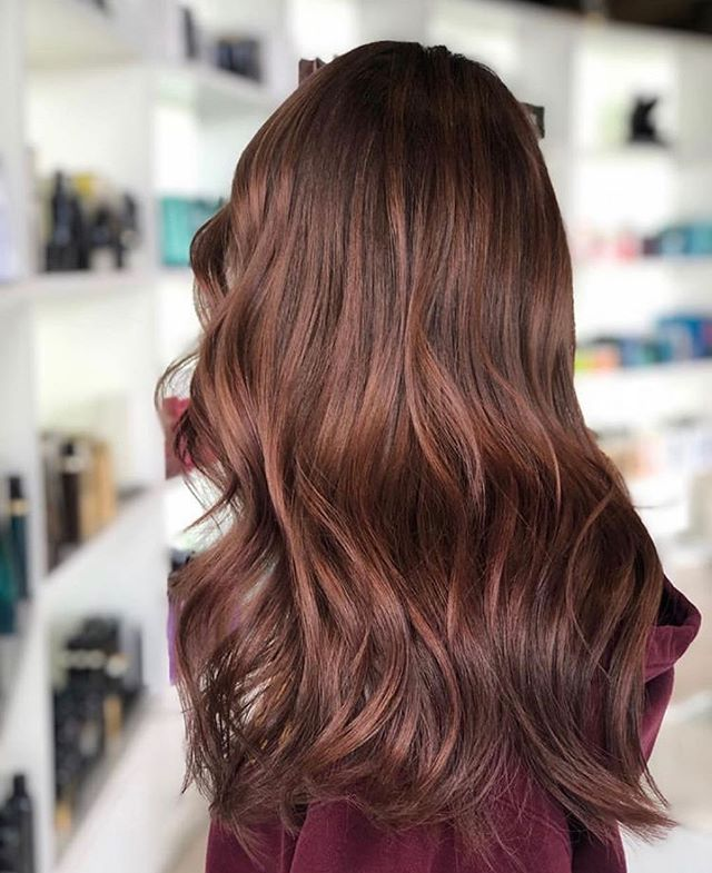 ➖ rich ➖  Stylist: Amanda.  #goodhair #annarborhair #trichosalonandspa #healthyhair #hairinspo #hair #hairstyles #haircolor #annarborstylist #hairenvy #annarbor #annarborsalon #briarwoodmall #michiganstylist #richcolor #balayage #dimensionalbrunette #goals #inspiration #haircut #hairstyle #colorist #hairlove #hairoftheday @bestofbalayage @modernsalon @american_salon @hairbrained_official @goldwellus @redken