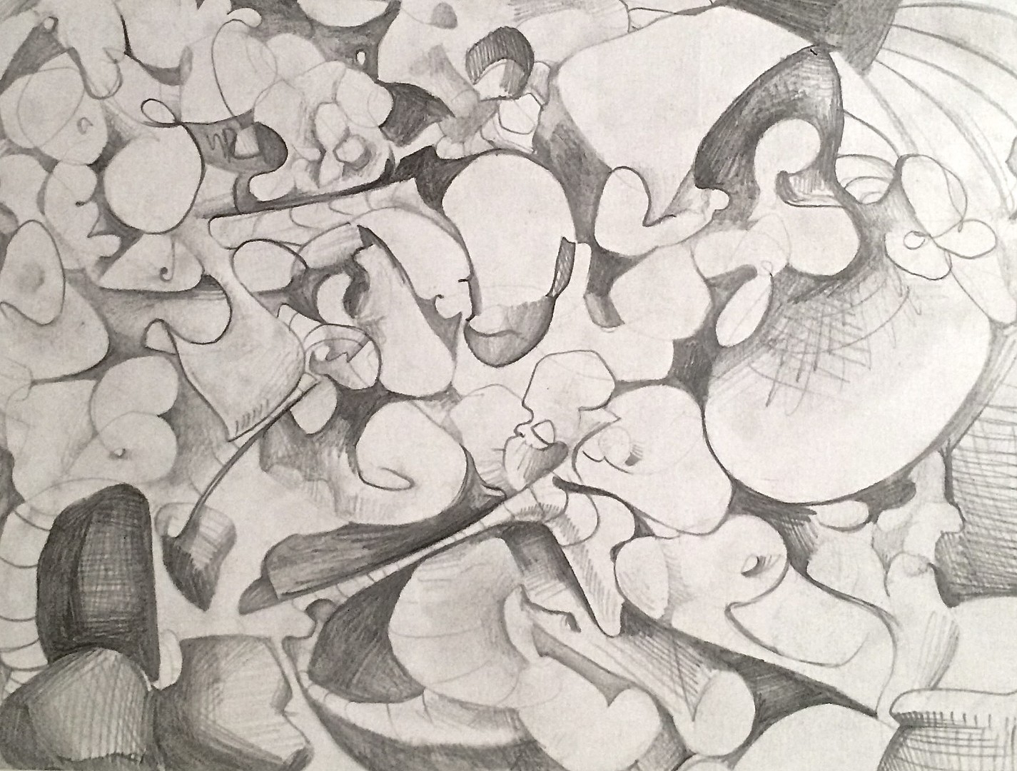 Study for Flowerbed I   Graphite and Paper.  2015 9 in x 14 in