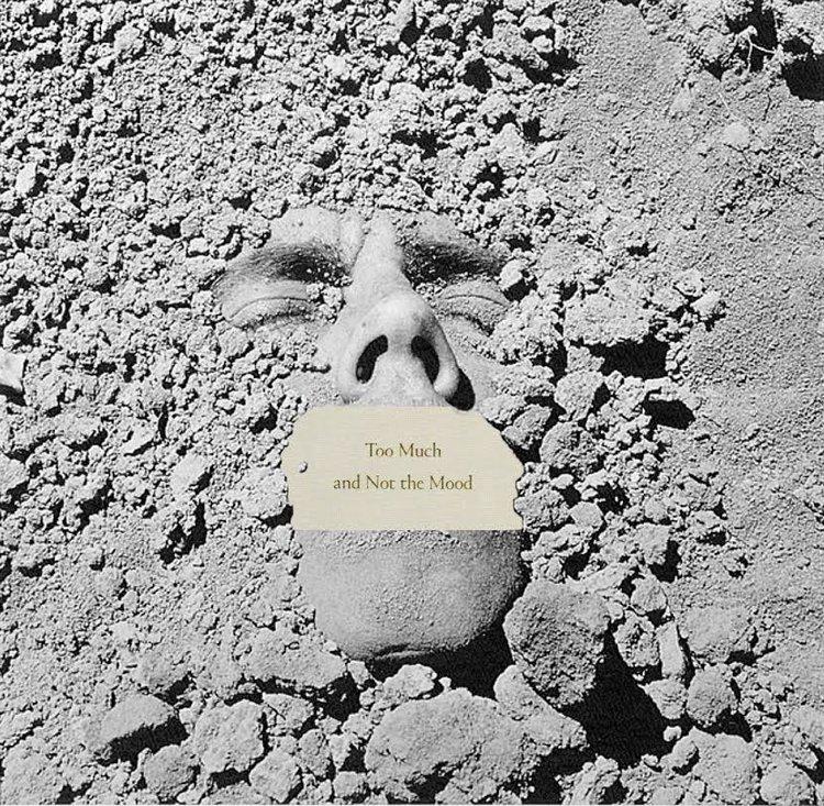 TOO MUCH Chew-Bose title / Wonarojiz Photo digital collage. 2018 1:1