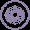 ICONS_Nanotrain_Blog-03.png