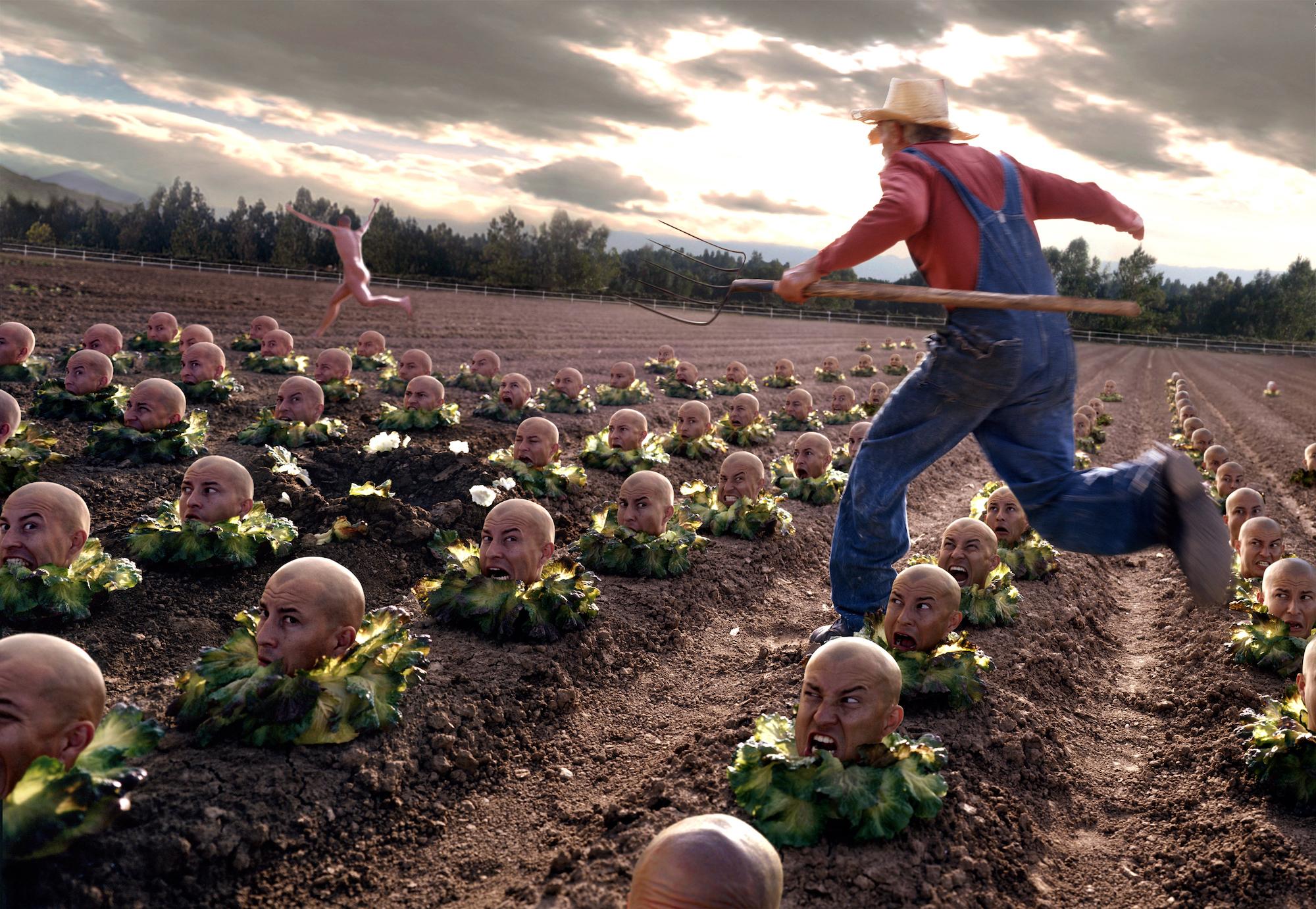 ---lettucehead.jpeg