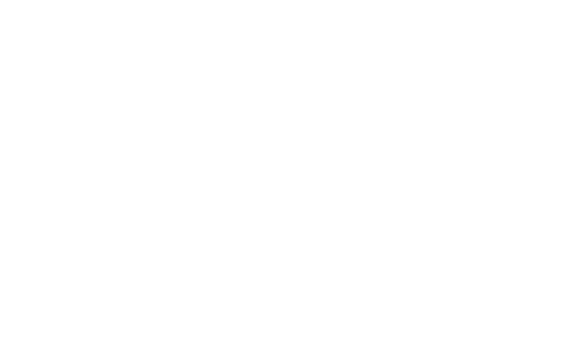 hand lettered commissions