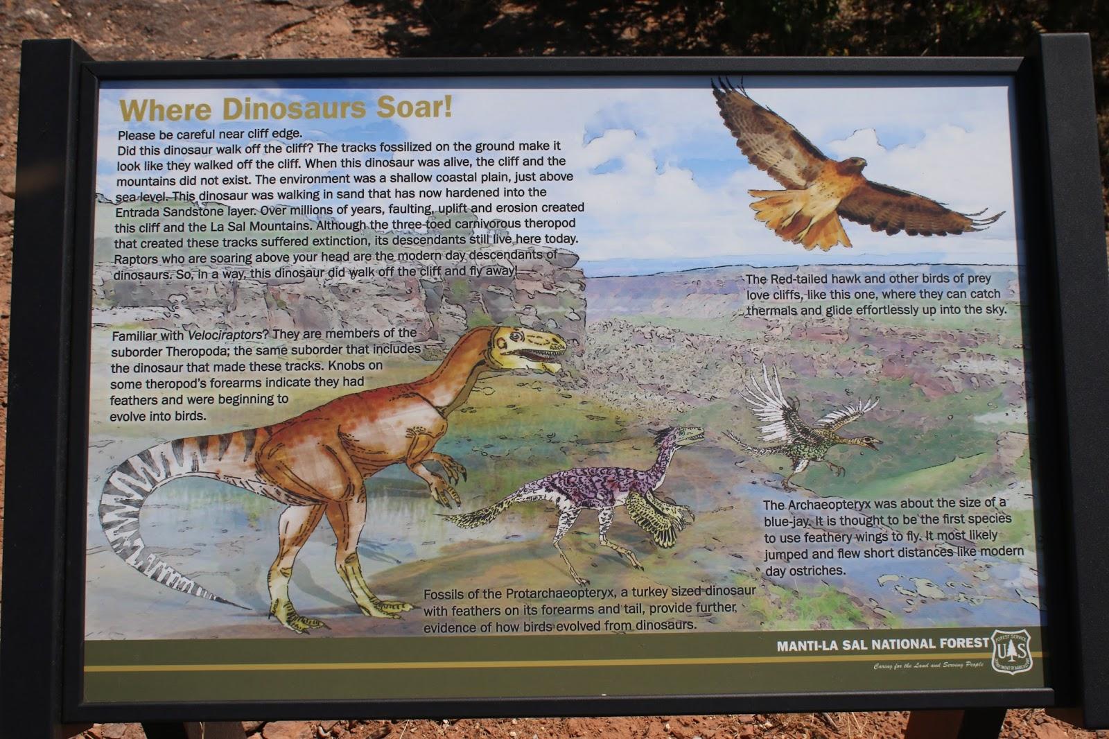 Bull Canyon Dinosaur Tracks 010.JPG