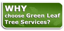 why-choose-green-leaf.jpg