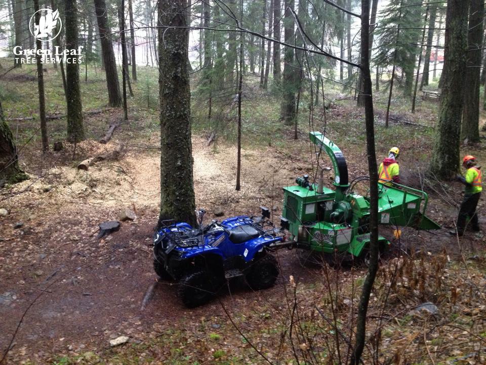 trail-building-maintenance.jpg