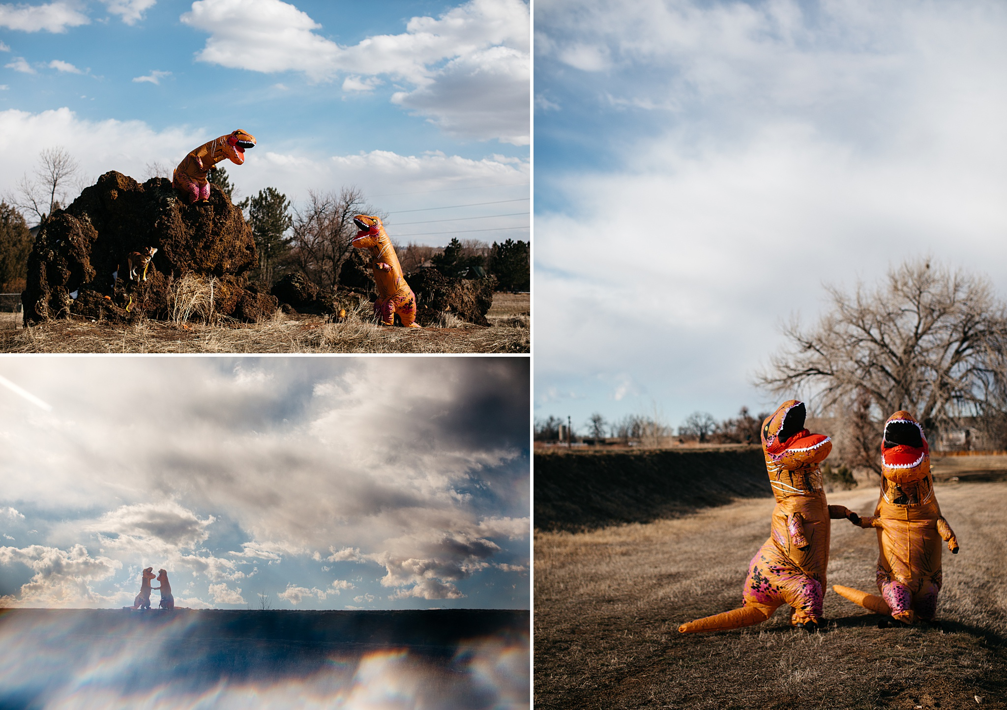 dinosaur costume session unique engagement photo ideas