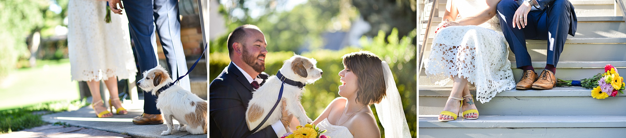 Felise and Adam had their adorable scruffy pupper at their ceremony with them at the Montclair Civic Center.